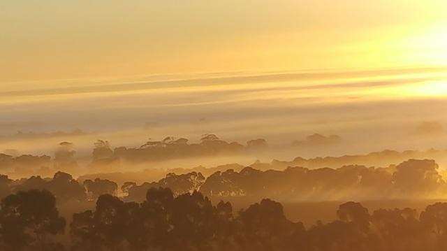 Sunrise above the fog